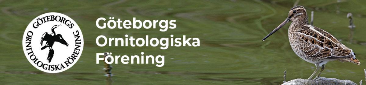 Göteborgs Ornitologiska Förening